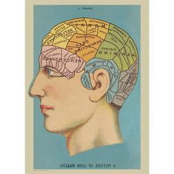 Phrenology Chart Vintage Style Head Poster Decorative Paper