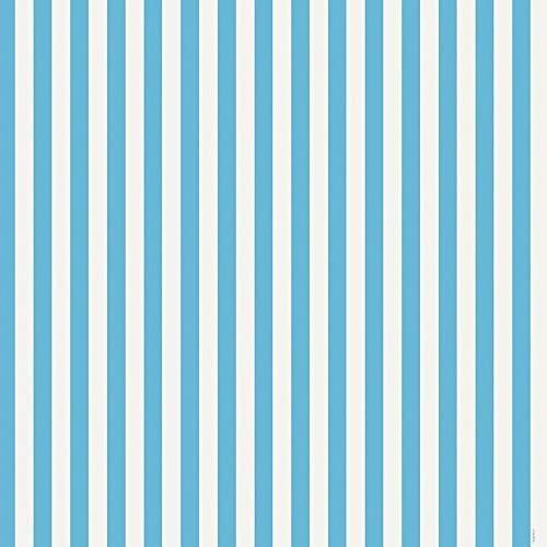 light blue striped wrapping paper