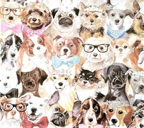 puppy party gift wrapping paper roll 24