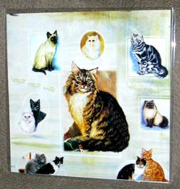 VARIETY OF CATS & KITTENS Gift Wrapping Paper w/matching Gif